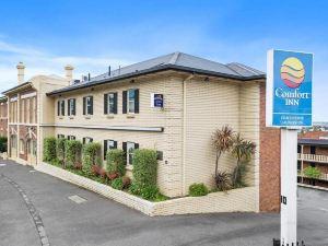 朗塞斯頓舒適酒店(Comfort Inn Coach House Launceston)