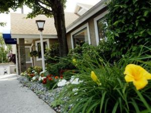 紐黑文鄉村套房酒店(New Haven Village Suites)
