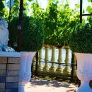 沙爾多奈酒店(Chardonnay Lodge)