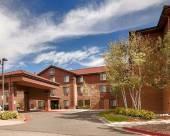 丹佛國際機場貝斯特韋斯特優質套房酒店