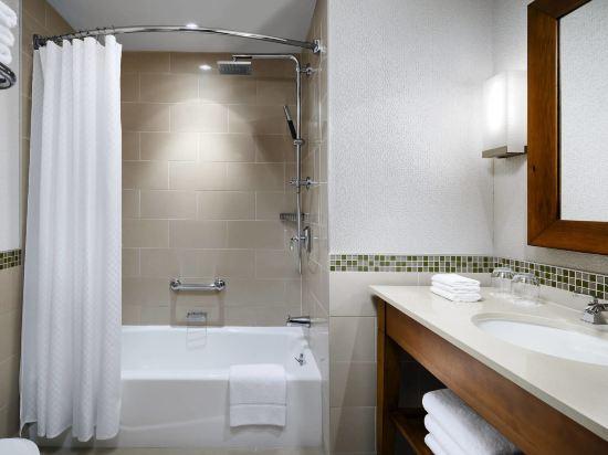 海柏温哥華威斯汀酒店(The Westin Bayshore Vancouver)傳統城景2張雙人床房