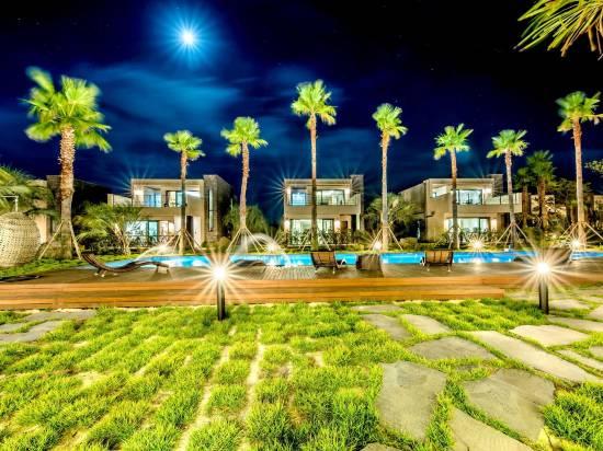 藝術泳池別墅 Spa 酒店