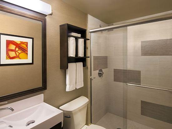 紐約曼哈頓金融區假日酒店(Holiday Inn Manhattan Financial District New York)2雙人床房