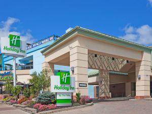 尼亞加拉瀑布假日酒店(Holiday Inn Niagara Falls-by the Falls)