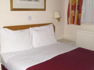 奇西克洛奇酒店(Chiswick Lodge Hotel)