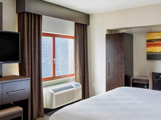 紐約曼哈頓金融區假日酒店(Holiday Inn Manhattan Financial District New York)休閒房