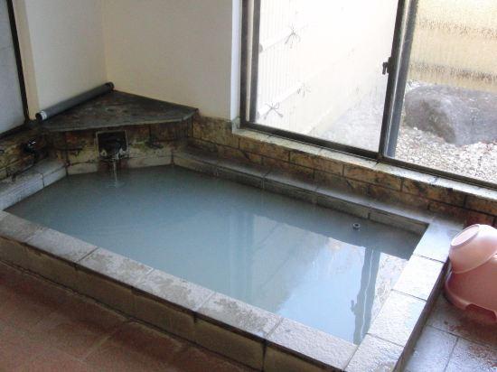 富士箱根旅館(Fuji-Hakone Guest House)室內游泳池