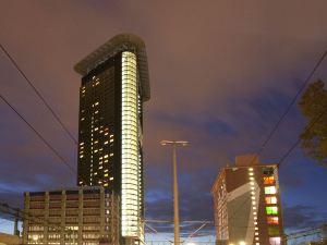 海牙塔頂層公寓