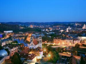 立陶宛麗笙藍標酒店