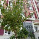 幽徑酒店(Hôtel du Marché)