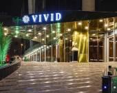 吉達維維德酒店