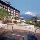 靜岡葡萄酒釀造所酒店(Shizuoka Hotel Winery Hill)