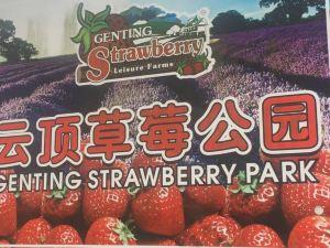 云頂草莓休閑度假公寓(Genting Highlands Strawberry Home Vacation)