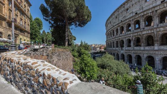 Amazing Colosseo