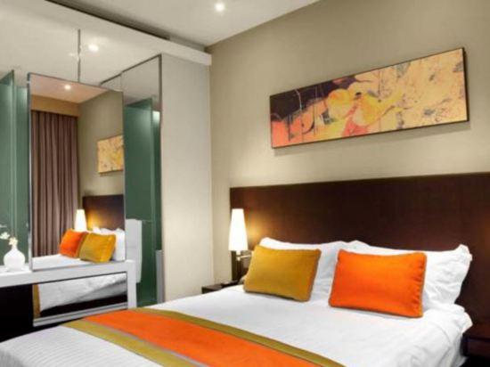 新加坡柏偉詩酒店(Park Regis Singapore)園景房
