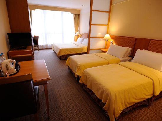 香港嘉湖海逸酒店(Harbour Plaza Resort City)家庭房