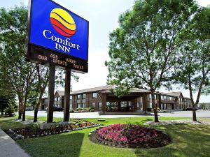 溫尼佩格機場舒適酒店(Comfort Inn Winnipeg Airport)
