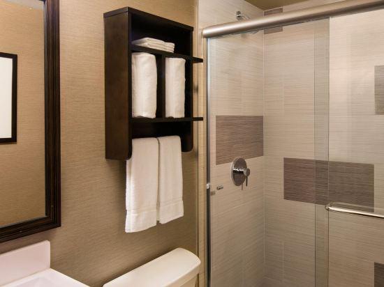 紐約曼哈頓金融區假日酒店(Holiday Inn Manhattan Financial District New York)城景房
