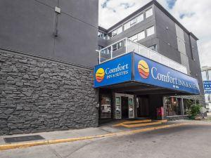 埃德蒙頓城中心舒適酒店(Comfort Inn & Suites Downtown Edmonton)