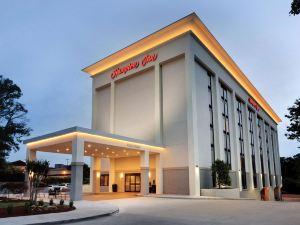 亞特蘭大-巴克海特歡朋酒店(Hampton Inn Atlanta-Buckhead)