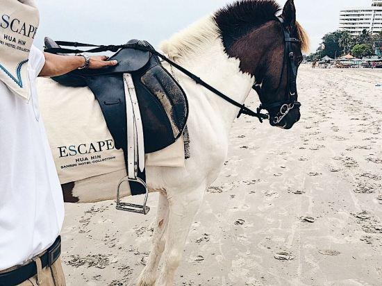 華欣世外桃源酒店(Escape Hua Hin Hotel)其他