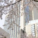 東京君悅酒店(Grand Hyatt Tokyo)