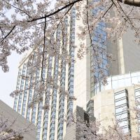 東京君悅酒店酒店預訂