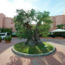 錫耶納大陸酒店(Hotel Siena Degli Ulivi)