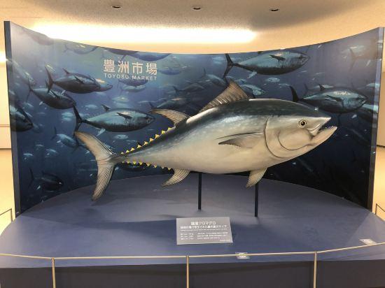 東京灣有明華盛頓酒店(Tokyo Bay Ariake Washington Hotel)其他