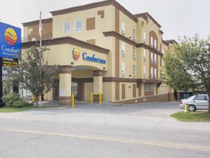 大學舒適套房酒店(Comfort Inn & Suites University)