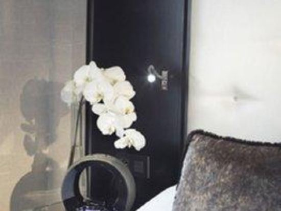 歌劇院鑽石阿爾巴宅邸酒店 - 貝斯特韋斯特頂級精選(Hotel Opera Diamond, BW Premier Collection)其他