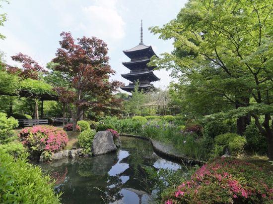 京都塔酒店(Kyoto Tower Hotel)其他