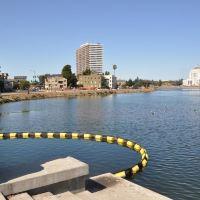 奧克蘭市中心/梅里特湖美國最佳價值旅館酒店預訂