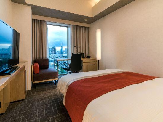 東京有明大和ROYNET酒店(Daiwa Roynet Hotel Tokyo Ariake)標準大床房