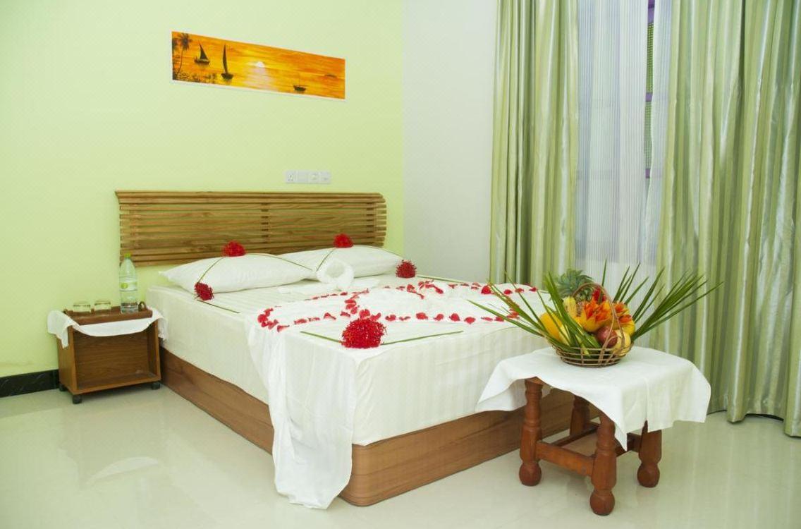 Palm Garden Тодду