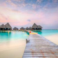 馬爾代夫可可島棕櫚杜尼魯酒店酒店預訂