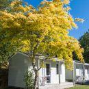 皮克頓TOP10假日公園酒店(Picton TOP 10 Holiday Park)