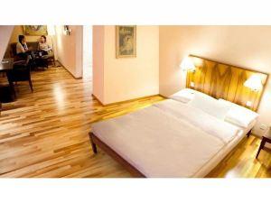 巴塞爾施維瑟酒店(Hotel Schweizerhof Basel)