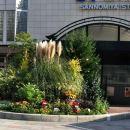 神戶維亞馬雷酒店(Hotel Viamare Kobe)