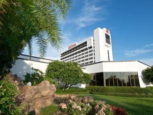 西岸坦帕機場希爾頓酒店