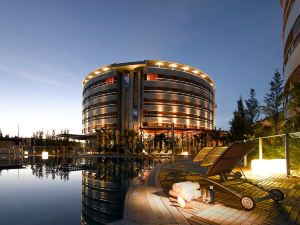 阿巴迪斯內華達皇宮酒店(Abades Nevada Palace)