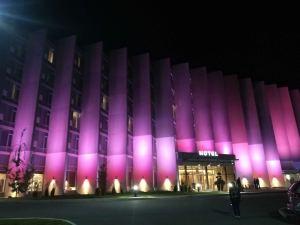 灰鷹度假酒店(Grey Eagle Resort)