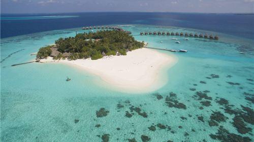马尔代夫+蓝色美人蕉Thulhagiri6日4晚自由行(4钻)·免费升一价全包+含上岛接送+送一次出海钓鱼