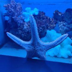 南寧海底世界用戶圖片