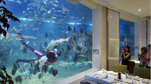 三亚5日自由行(5钻)·华宇亚龙湾迎宾馆·赠送海洋主题餐厅自助餐