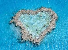 澳大利亚汉密尔顿岛4日3晚半自助游(4钻)·【蜜月之旅+休闲放松之旅】汉密尔顿岛+心形大堡礁+大堡礁出海珊瑚礁世界线+舒适住宿+浪漫轻松之旅
