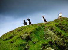 法罗群岛6日半自助游·小冰岛黄金圈+北部6岛+南部3岛+海鹦鸟崖·米基内斯岛+灯塔+徒步+瀑布+全景跳岛精选行程