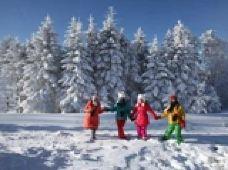 伊春3日2晚跟团游·库尔滨雾凇-红星火山地质公园-汤旺河石林-梅花山滑雪-宝宇温泉(精品小包团)