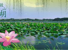 山东台儿庄区2日1晚跟团游·【暑期】台儿庄古城+微山湖红荷湿地二日游(非周末)