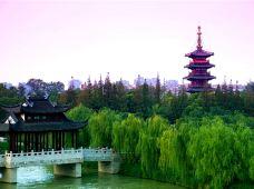 南京+无锡+苏州+上海4日3晚跟团游·纯玩.赏苏州假山园林、可观虎丘、逛无锡三国水浒、游历史古都南京、登东方魔都、含 水上游船